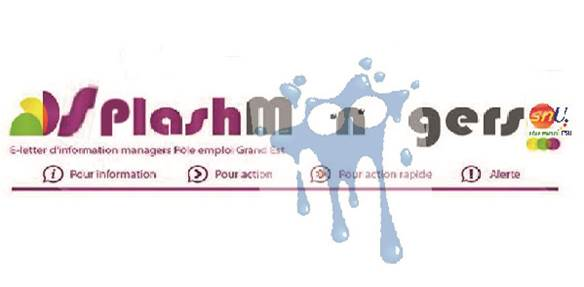 Splash managers :Recrutement de CDD